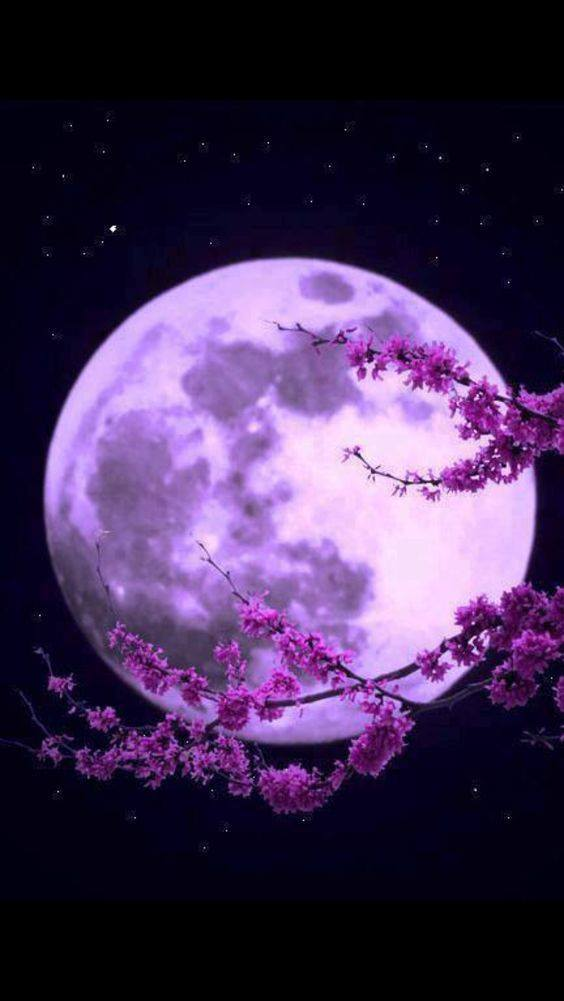 Pleine lune 7 aout 2017