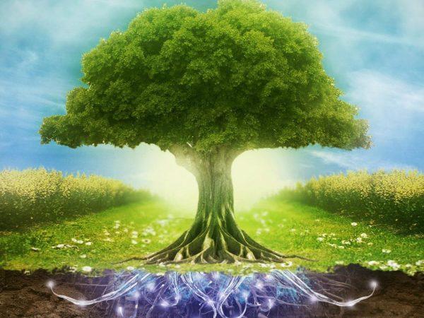 Tissia Louis, formation en thérapie énergétique et holistique méthode A.T.T.H, schéma de comportement inconscient, développement personnel, chant sacré